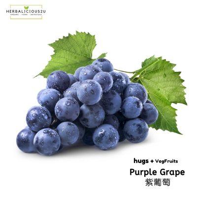Freeze Dried Purple Grape | 冻干紫葡萄