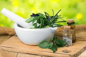 Herbalism Introduction Course