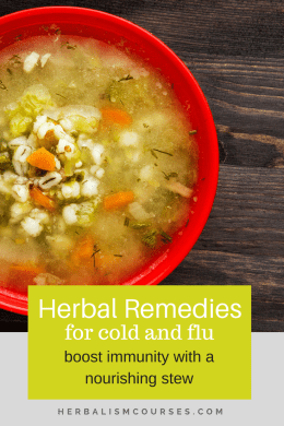 Natural Remedies to Boost Immunity