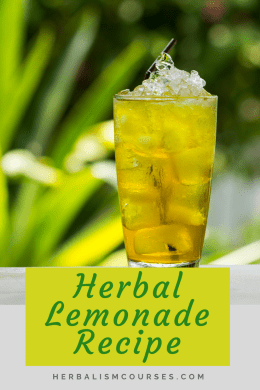 This herbal lemon tea recipe is a delicious and healthy variation on traditional lemonade. #HerbalLemonade #HerbalTeaRecipe #HomemadeHerbalTea #DIYHerbalTea #Herbalism #HerbalMedicine #HerbalismCourses