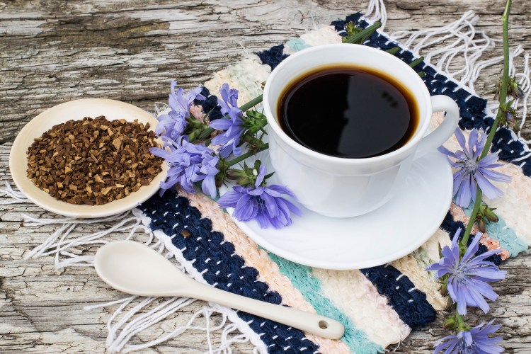 Both chicory root and dandelion root make a healthy coffee substitue. They provide herbal medicine benefits as well. #CoffeeSubstitute #ChicoryRoot #DandelionRoot #HerbalCoffee #Herbalism #HerbalMedicine #HerbalismCourses #OnlineHerbalCourse