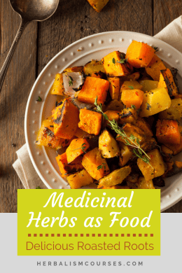 The star of this medicinal roots recipe is burdock. Burdock is a well-known plant in herbalism. It's an herbal remedy for detox and skin ailments. #MedicinalPlantsRecipes #BurdockRecipes #GarlicRecipes #RosemaryRecipes #Herbalism #HerbalMedicine #HerbalMedicineCourses #OnlineHerbalCourse