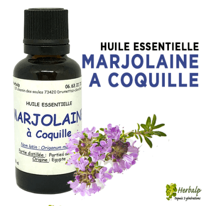 huile-essentielle-Marjolaine-a-coquille