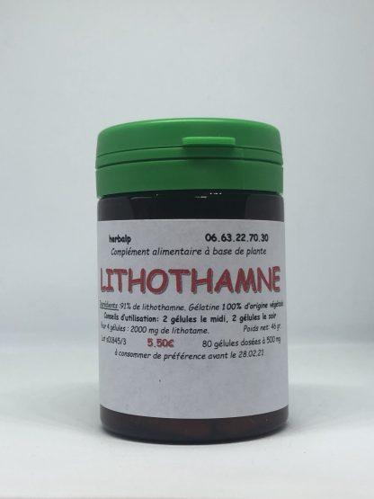 Gelules-plantes-lithothamne