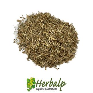 infusion-epilobe-herbalp