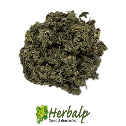 infusion-framboisier-herbalp