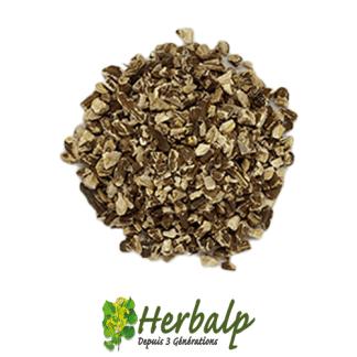 infusion-Pissenlit-racine-coupe-herbalp