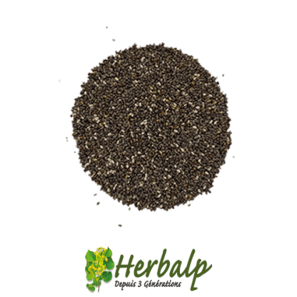 graines-Chia-herbalp