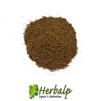 Coriandre-moulue-herbalp