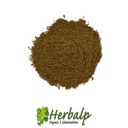 Garam-massala-herbalp