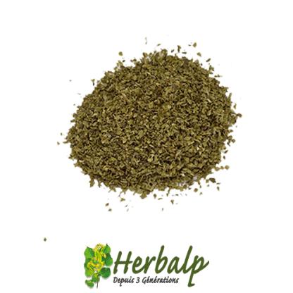 origan-herbalp