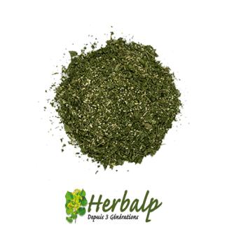 Persillade-herbalp