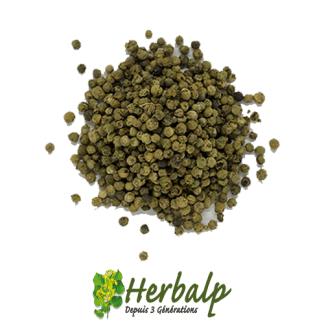 Poivre-vert-herbalp
