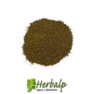 Thym-moulu-herbalp