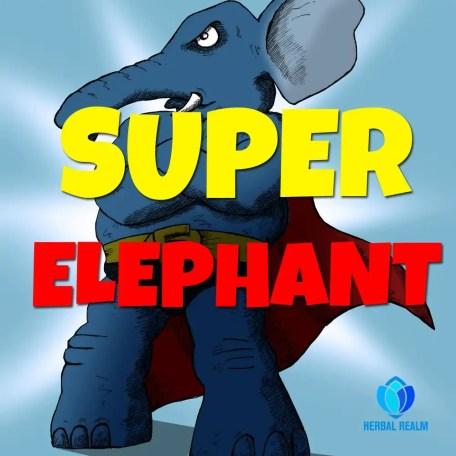 super-elephant