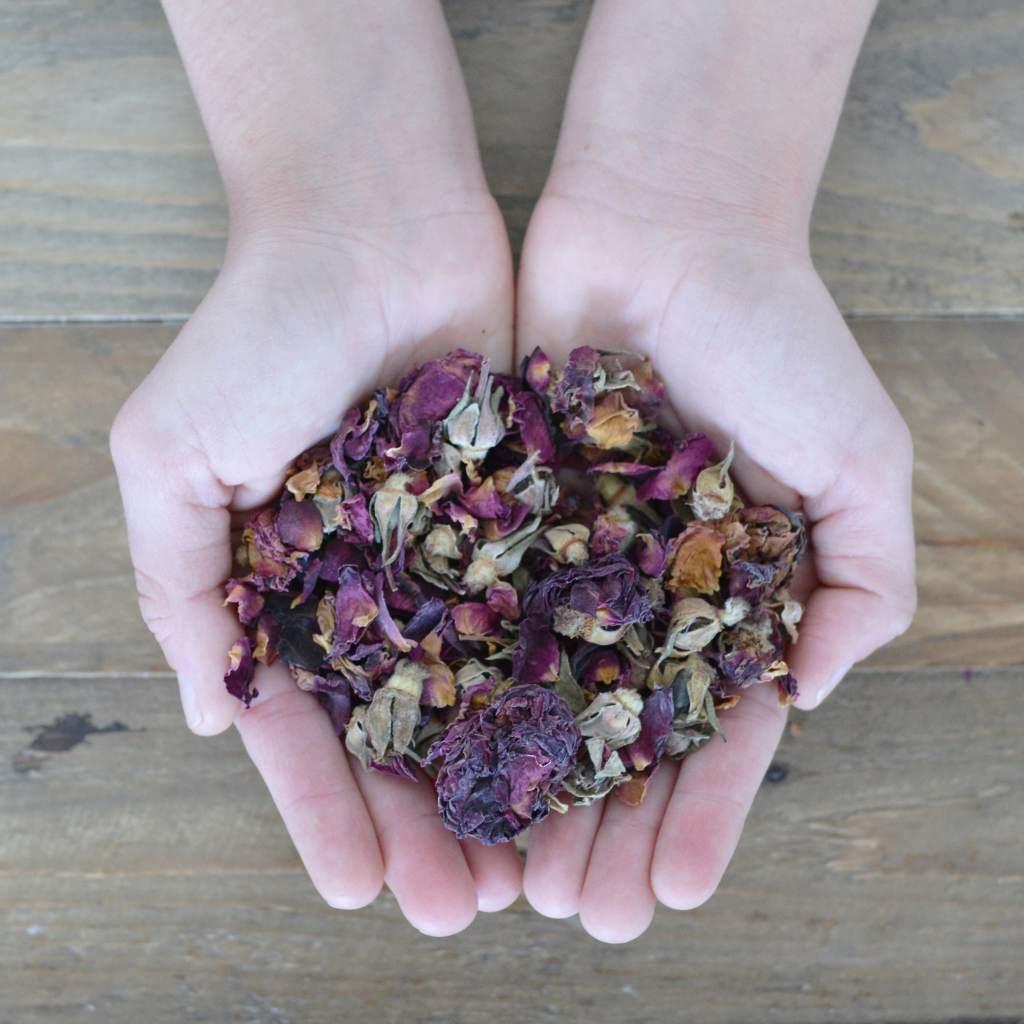 Herbal Spirits Rose In Hand