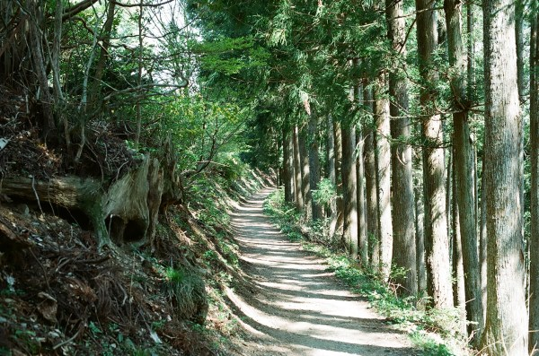 The path to Mt Hinode
