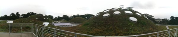Academy of Sciences living roof