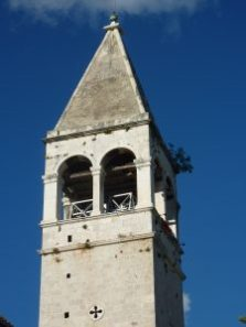 Fig tree growing at the top of a church steeple.