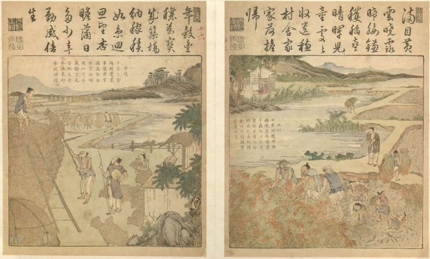 17th Century rice cultivation in China, with poems from Emperor Kangxi in cursive script from Yu Zhi Geng Zhi Tu
