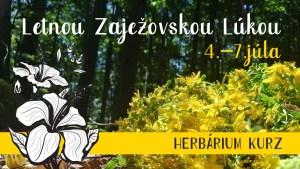 HERBÁRIUM VÍKENDOVÝ KURZ: Letnou zaježovskou lúkou 2019 @ Brána | Pliešovce | Banskobystrický kraj | Slovensko