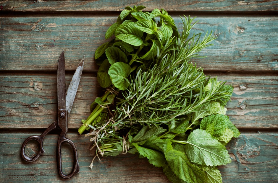 It's important to have a plan on how to store the fresh herbs from your garden until you are ready to use them, so they don't go to waste.