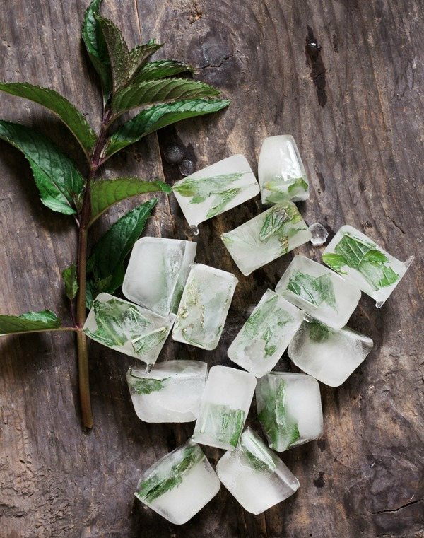 Herbs frozen in ice cubes are a wonderful way to preserve fresh herbs from your garden and can be added to drinks or while cooking soups, stews, stir fries and more.