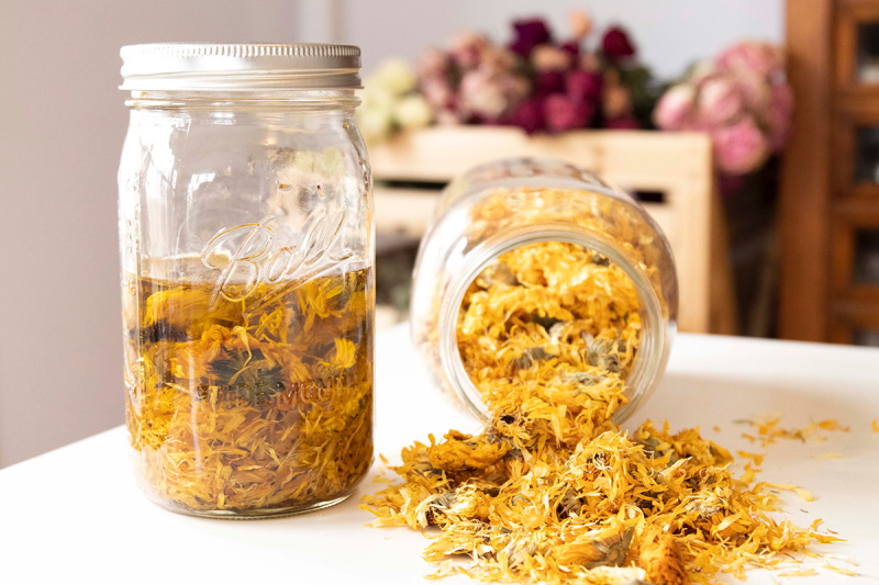 Learn how to make herb infused oils and salves in this free online Herbal Preparations 101 mini course