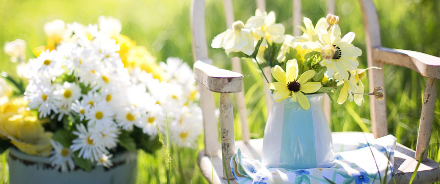 July Do's and Don'ts For Gardeners