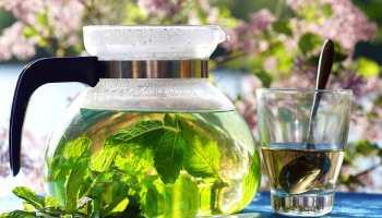 como preparar te verde
