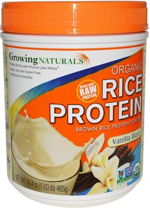 Rice Protein Powder HK 香港 Organic 有機