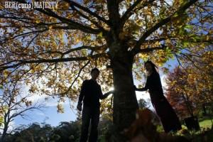 【Travel】Mount Wilson, NSW .::When in Autumn::.