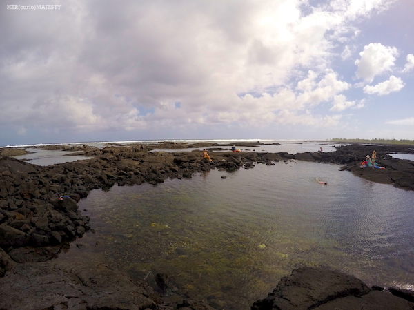 Hawaii Tide Pools