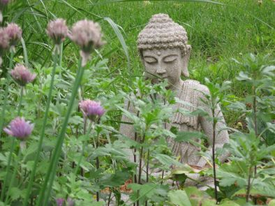 image of buddha in spring garden, time to think about being the teacher or the student