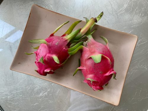 Pair of dragonfruits displayed in a dish