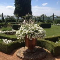 Jardins d'Eyrignac: The Best Little Topiary Garden In France