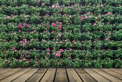 Photo: Vertical flower garden;