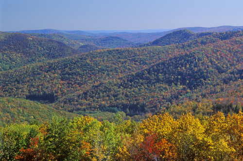 Berkshire Mountains