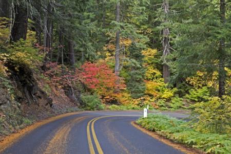McKenzie Pass, Oregon