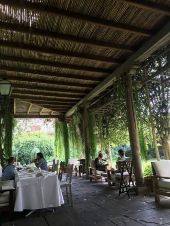 Lima garden