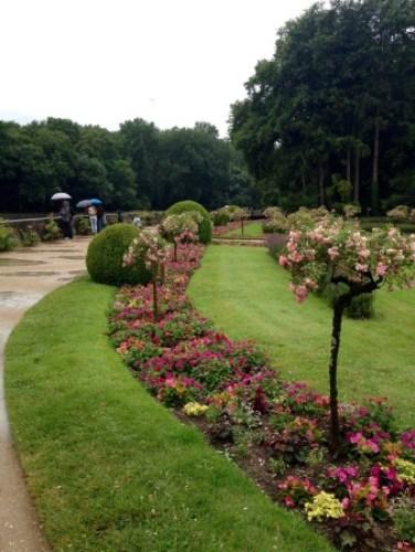 Chen.Medici garden (1)