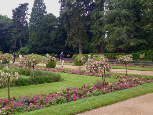 Chen.poitier garden 2 (1)