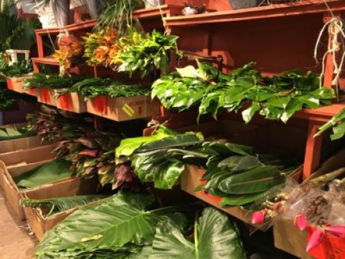 Foliage for sale in New York City's flower district
