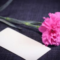 How Carnations Became the Official Mother's Day Flower