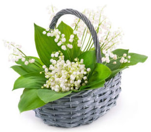 Why Lily Of The Valley Is The Official May Day Flower Here By Design