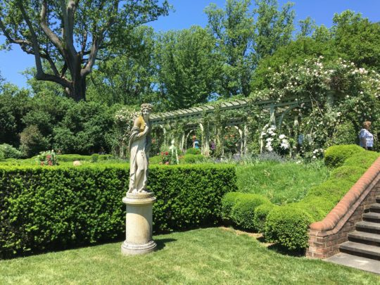 Mount Sharon Rose Garden/Photo: Here By Design