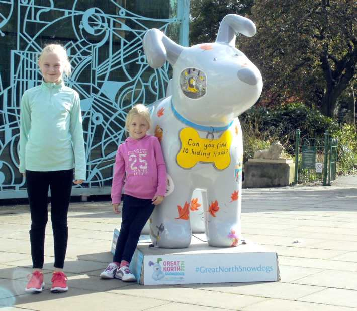 Great North Snowdogs - Hiding Lions