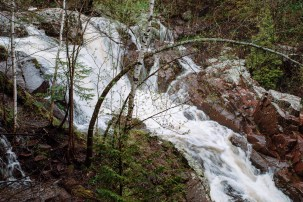 Tischer Creek 5-21-2017-1604