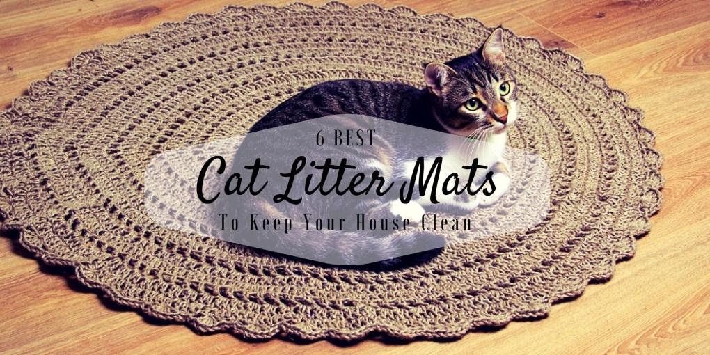 best cat litter mats