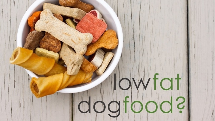 honest kitchen dog food reviews rugs for the 4 best low fat foods: when & why your might need it